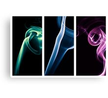 eden series x3 Canvas Print