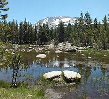 Tioga Pass  by Yool