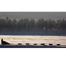 Husky Sledding - Lapland, Sweden Photographic Print
