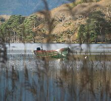 Kerry Mountains Killarney lakes in Ireland 16 by GeorgiaConroy