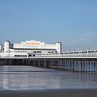 The old pier in Weston super Mare by TimLarge
