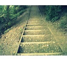 woodland steps Photographic Print