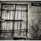 A little Window to the World by Morten Kristoffersen