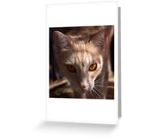 The Eyes of Raymond Greeting Card