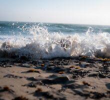 Wave by Michael Mavor