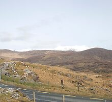 Kerry Mountains Killarney lakes in Ireland 26 by GeorgiaConroy