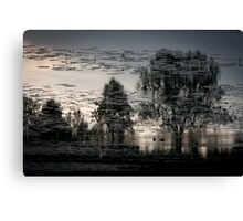 Water's landscape Canvas Print