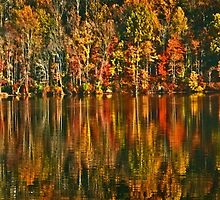 Autumn Reflections by cclaude