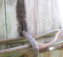Barbed Wire Fence Post by swannonthefarm