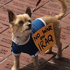 Four-Legged Protester by Gregory L. Nance
