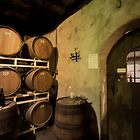 Wine Cellar  by Yelena Rozov