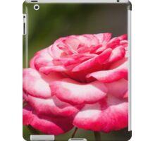 Layered Cake iPad Case/Skin