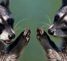 """""""OK.....We Promise!"""" by Martin Smart"""