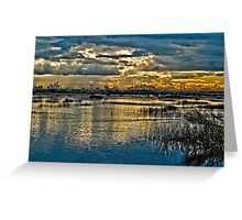 Wetlands in High Definition Resolution   Greeting Card