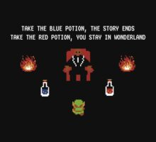 Legend Of The Matrix by Rhonda Blais