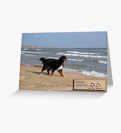 Dog Sympathy Card (beach) Greeting Card