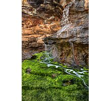Web Falls Photographic Print