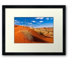 Sand Country Framed Print