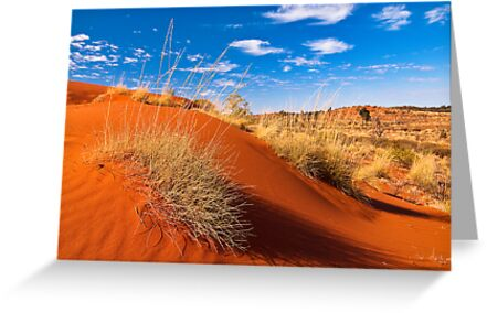 Sand Country by Dieter Tracey