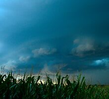 Ominous Clouds Over Corn Field 2 by Christopher Hanke