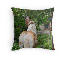 Horses Pick, Also Throw Pillow