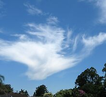 cloud formation Macksville nsw by ruffy52
