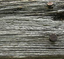 Nails in an old wooden barn board by swannonthefarm