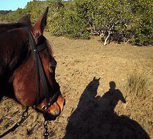 Shadow of Interest by rogbar101