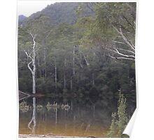 #3505 - reflections  at Lake Parangana  Poster