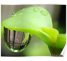 Reflection in Water droplet  Poster