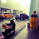 Taiwanese by Brian Webb