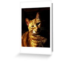 Daddy's Girl Greeting Card
