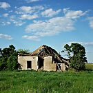 Ruins of a Farm in the South of Hungary by Istvan Natart