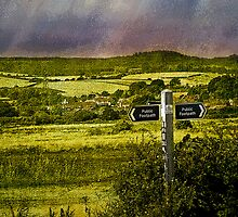 Exminster (from Turf Cottage, Topsham) by dmacwill
