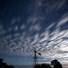 Moonlight Milky Way by Peter Doré