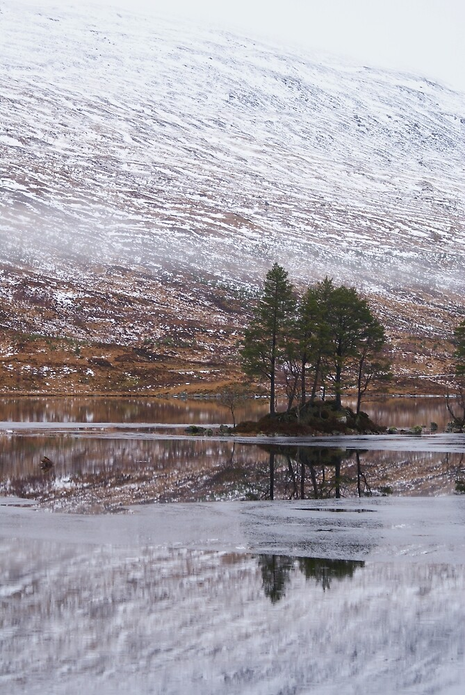 An island with trees on a partially frozen Loch Ossian by Antony Lakey
