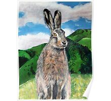 The Hare Poster
