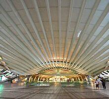 the canopy. Gare do Oriente. Lisbon by terezadelpilar~ art & architecture