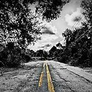 The Road You Choose by Peyton Duncan