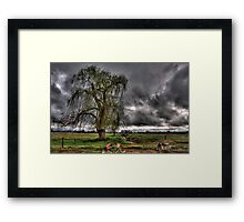 Willows and water wheels Framed Print