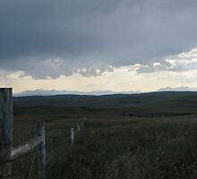 Storm Approaches by Kathi Arnell