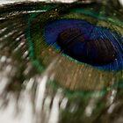 peacock by marajade