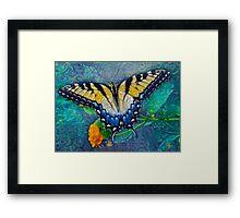 Swallowtail 2 Framed Print