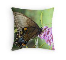 Eastern Tiger Swallowtail Female Throw Pillow
