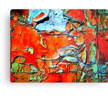 Not Newly Painted - Red Metal Print