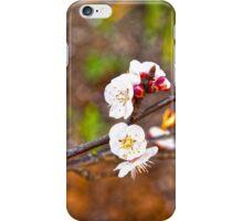 Last little blossoms... iPhone Case/Skin