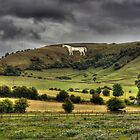 Westbury White Horse by David Jacks