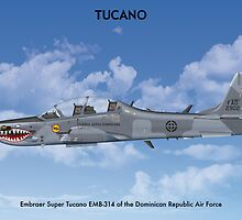 Embraer Tucano Dominican Republic 1 by Claveworks