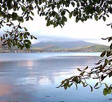 Dingle Bay-Ireland by mairead62