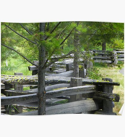 Rail Fence Poster